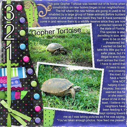 Turtle_endangeredresize