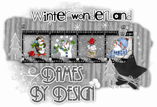 Dames_home_page_winter_rlh