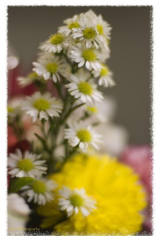 Flowersmask1resize