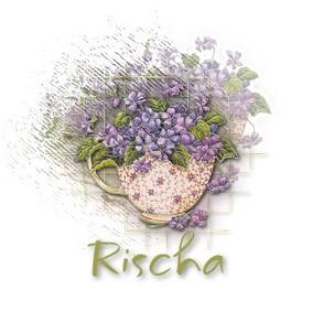 Rischasw_focus2